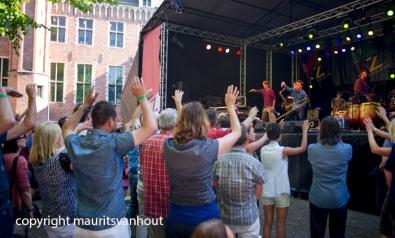 Jazz festival Middelburg 2014 Jungle by night