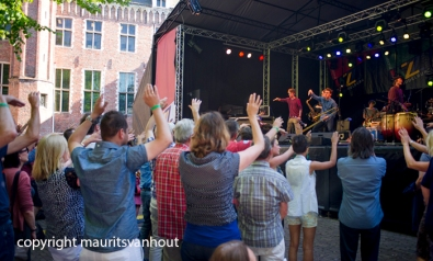 Jazz festival Middelburg 2014 Jungle by night