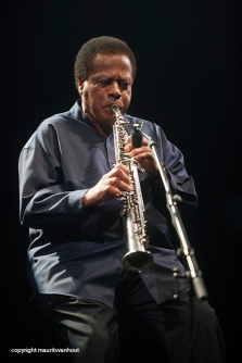 Herbie Hancock and Wayne Shorter live at Jazz Middelheim 2014