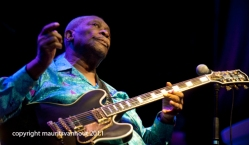 bb king live op gent jazz 2011