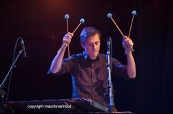 Antwerpen, 12 augustus 2016, Pascal Schumacher treedt op met diverse muzikanten tijdens het jaarlijkse Jazz Middelheim in Antwerpen. Foto: Pascal Schumacher