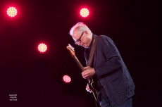 Bill Frisell live at Jazz Middelheim